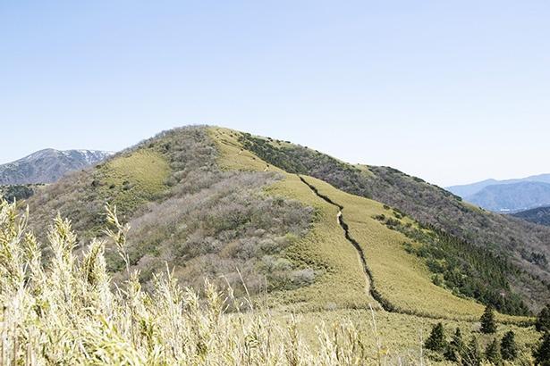 明神ヶ岳方面へ延びる道が見える。気持ちい光景