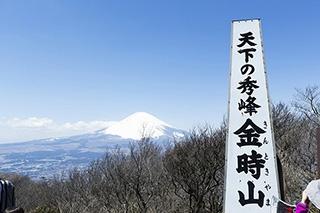 スタートからゴールまで絶景続き!神奈川の名山・金時山は満足感たっぷり