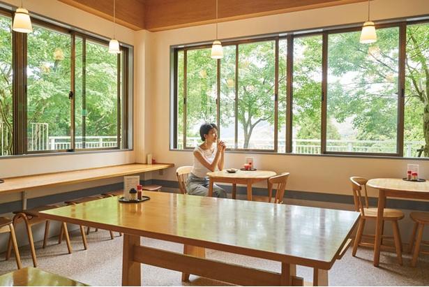店内の窓からは、巨大な千仏岩や美しい緑が見える / せんぶつ茶屋