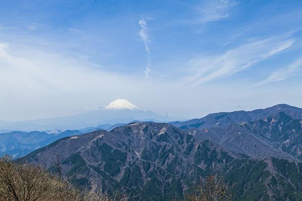 裏手に行くと富士山や箱根連山の壮大な景色に出合える