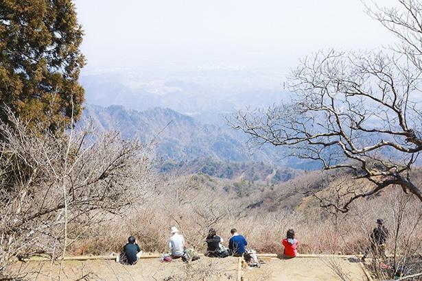 山頂では多くのハイカーが雄大な景色を見ながら休憩をしている