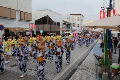 【写真を見る】さのさの踊りがいちき串木野市に本格的な夏を呼び込む