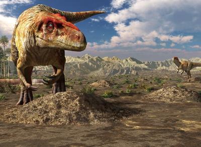 熊本 / 特別展「肉食恐竜-ミフネリュウ発見から40年-」/国内初の肉食恐竜化石「ミフネリュウ」発見以降の国内での恐竜研究の歴史を、約50点の展示で振り返る