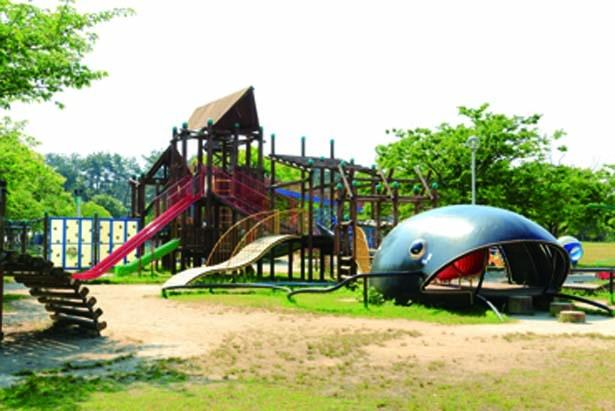ビワコオオナマズが目印の大型遊具など遊具の種類が多い/びわ湖 こどもの国