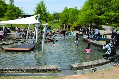 豊かな自然に包まれた「水の遊び場」には、飛び石や水上デッキが備わっている/兵庫県立淡路島公園