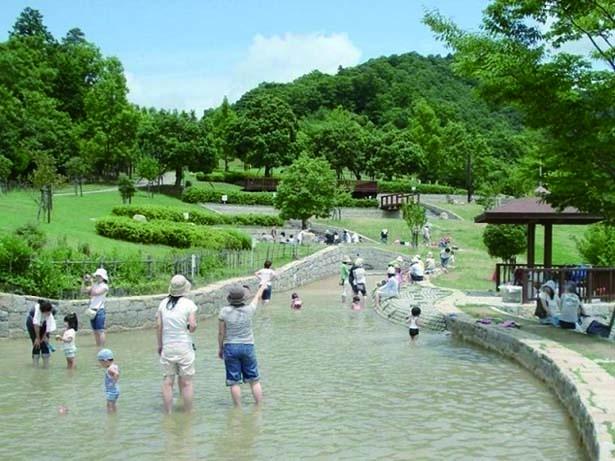 全長約210mの水遊び場「丘の流れ」/兵庫県立一庫公園