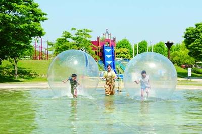 「コロンコロンぼぉ~る」は10月下旬までの土日祝、夏休みに実施/びわ湖 こどもの国