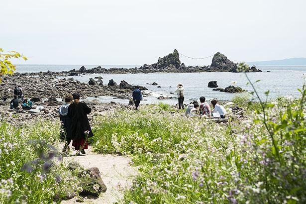 真鶴半島最南端。奥に見えるのが三ツ石