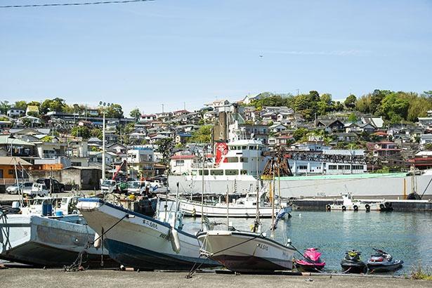 真鶴漁港。週末には朝市なども行われる