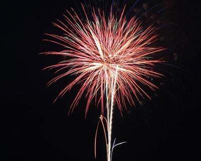 【写真を見る】中津祇園の初日を鮮やかに彩る / 中津市民花火大会