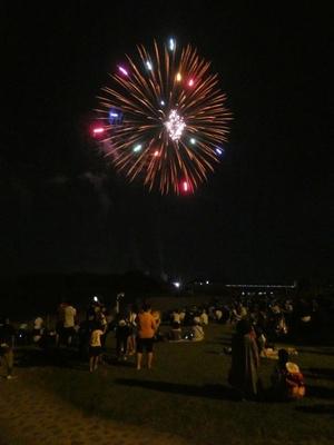 鎮西町夏まつり「波戸岬納涼花火大会」 / 波戸岬の漁火をバックに山型のナイアガラを披露