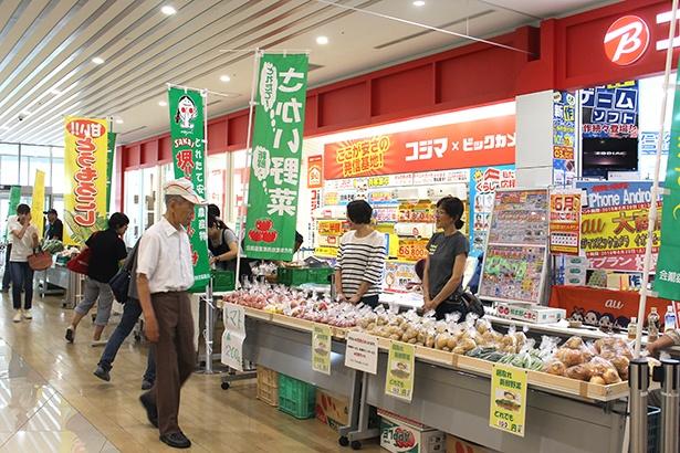 堺市内でとれた、朝採れの新鮮な農作物。通常市場に出回らないキズのあるトマトなども、安価で提供された