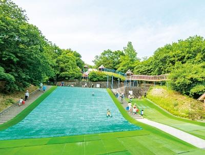 草ソリなど遊具以外のお楽しみがあるのも大型公園の魅力