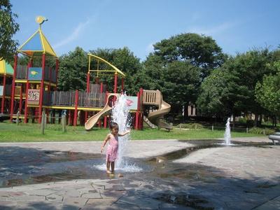水深が浅いので、幼児の初めての水遊びにピッタリ / 水沼の里2000年記念の森