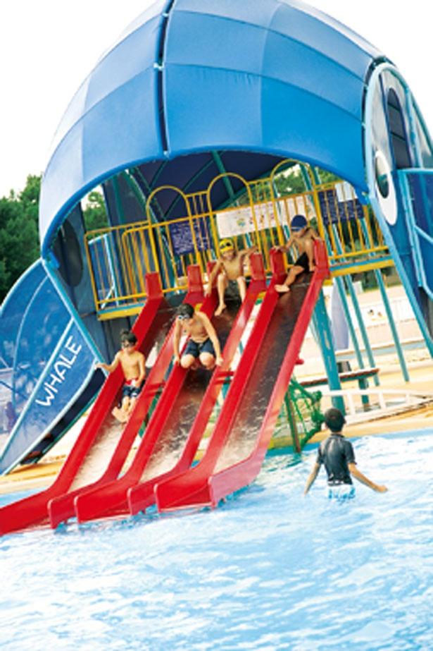 【写真を見る】「変形小プール」にあるクジラの滑り台は子供たちで大にぎわい/浜寺公園プール