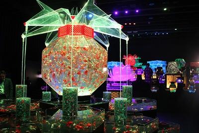 【写真を見る】巨大金魚鉢と周囲を囲む17のアクアリウムで構成された「超・花魁」