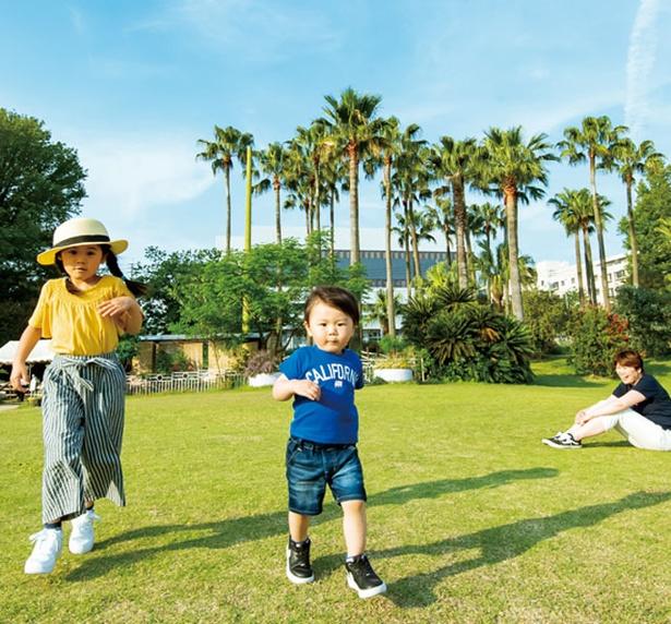 かしいかえん シルバニアガーデン / 緑に囲まれた広場で思いっきり遊べる。週末を中心にキャラクターショーなどを実施
