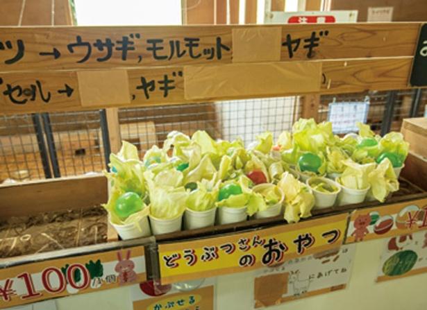 三瀬ルベール牧場 どんぐり村 / 小動物たちにやるエサも各所に置いてある(1個 100円)