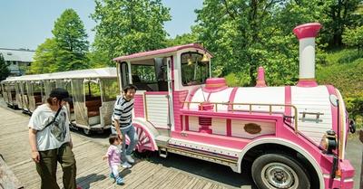 三瀬ルベール牧場 どんぐり村 / ピンク色でSL風車体のロードトレイン(片道300円、往復500円)。園中央の乗場から、往復約18分かけてゆっくりと走る