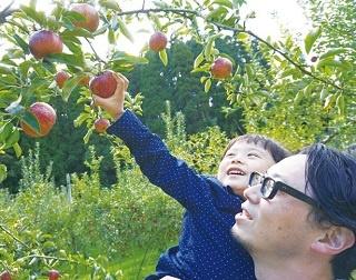 ファミリーにおすすめの九州の果物狩りスポット6選