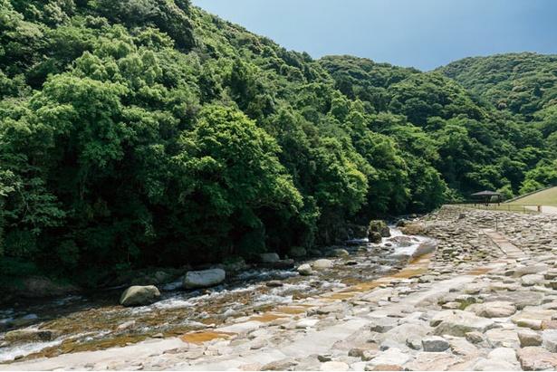 夏場は特に家族での水遊び場としておすすめ / モンベル五ヶ山ベースキャンプ
