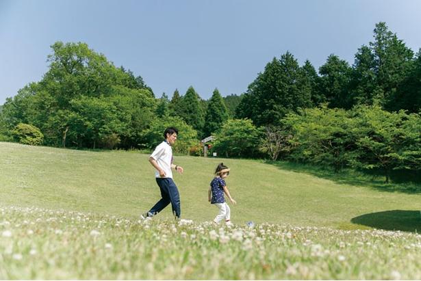 大自然の中、思い切り遊べる / 四季の里旭志キャンプ場