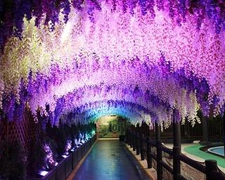 世界の「10の絶景」をプールで満喫!東京サマーランド「絶景!ナイトプール 2019」がスゴイ