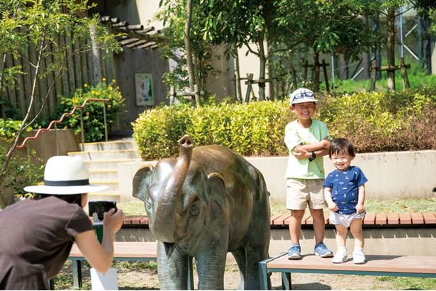 ヒョウなどが暮らすアジア熱帯の渓谷エリアでアジアゾウの像と記念撮影 / 福岡市動物園