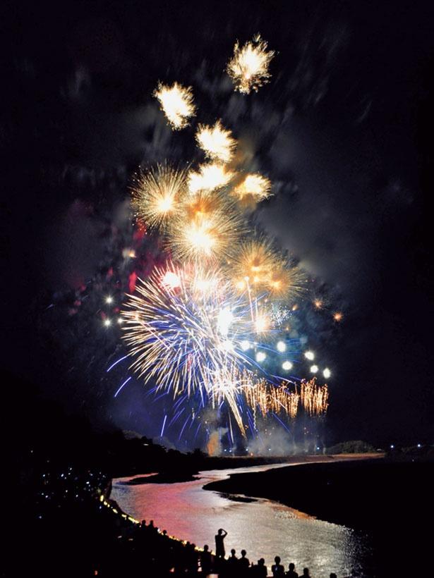 「日本煙火芸術協会」の特選玉が打ち上がる、京都で唯一の花火大会/亀岡平和祭保津川市民花火大会