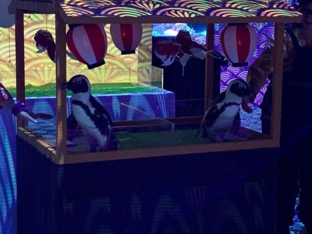 山車に乗ってペンギンたちが登場