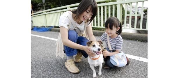 画像(1/4) 『犬とあなたの物語 ...