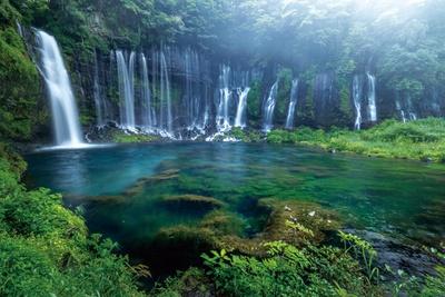 富士山の構成資産として世界遺産にも登録されている「白糸ノ滝」(静岡県富士宮市)