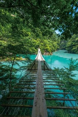 足元の板の隙間から下が見えるので、冒険しているようなスリルも味わえる! / 「夢のつり橋」(静岡県川根本町)