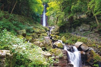 著名な文化人が訪れており、葛飾北斎も浮世絵に残している / 「養老の滝」(岐阜県養老町)