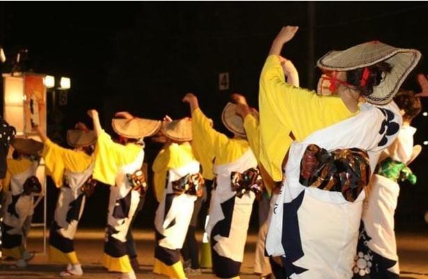 【写真を見る】踊りの当日参加もOK