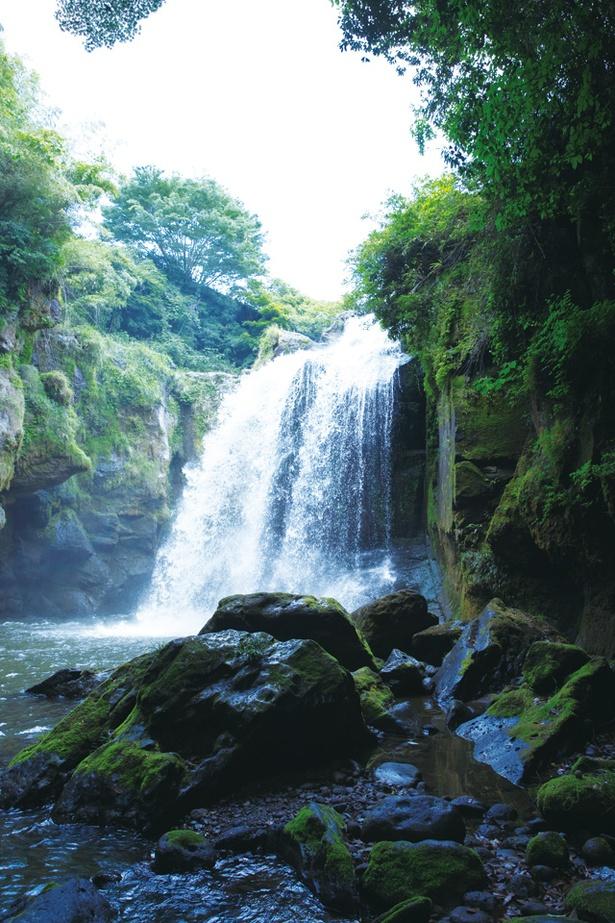 【写真を見る】黄牛の滝 / 落差25mから降り注ぐド迫力の水量!