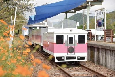 高千穂あまてらす鉄道 / 運行は1日約10便