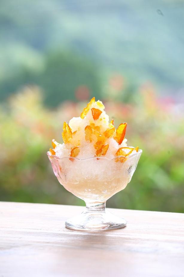 農家カフェ 風の道 / 「きんかんかき氷」(400円)はきんかんの爽やかな香りと程よい甘味がたまらない一品
