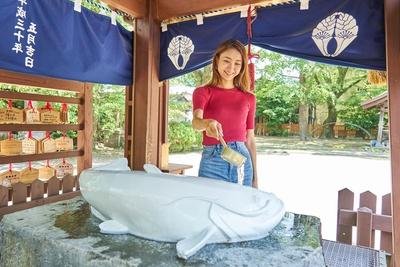 豊玉姫神社 / 二礼二拍手一礼のあと、柄杓でなまず様に願い水をかけて美肌を祈願