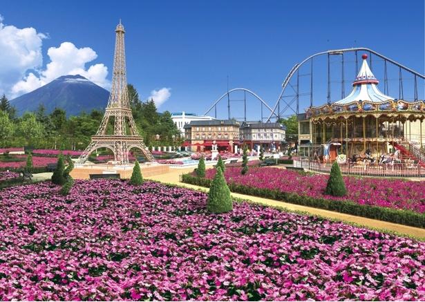 リサとガスパール タウンに、約2万株のピンクの花々が咲き誇る ※写真はイメージ