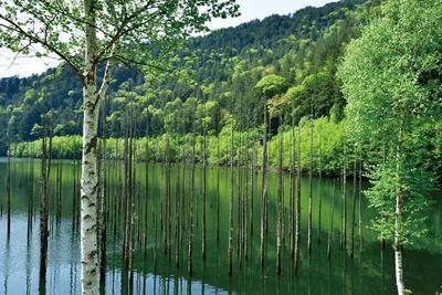 自然湖(長野県王滝村)