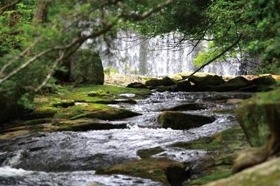 滝の裏が空洞になっていて音がすることから「鳴瀑」と呼ばれる/るり渓