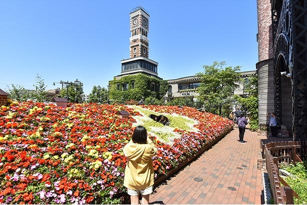 パークの中庭には花壇やバラ園などインスタ映えするポイントがいっぱい!