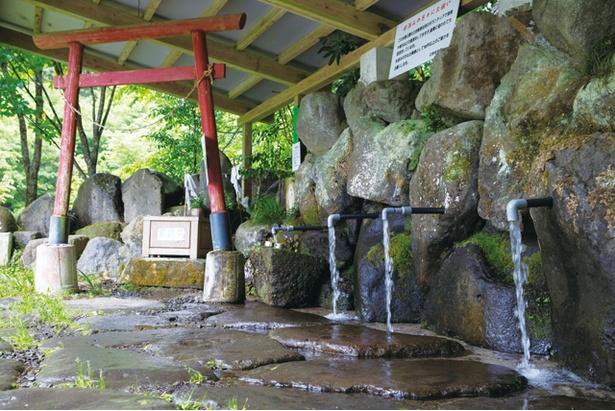 立岩水源そうめん流し / 富士の天然水より硬度が低い。「熊本県平成の名水百選」にも選定