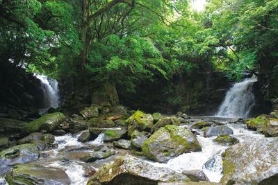 夫婦滝 / 左が田ノ原川で右が小田川。轟音と共に落ちる2つの滝は、写真映えも涼しさも2倍!? 「熊本県平成の名水百選」に認定