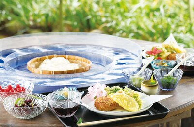 【写真を見る】立岩水源そうめん流し / 「そうめんセット」(1000円)。手作りのおからコロッケや季節の天ぷら、小鉢、立岩の水で淹れたコーヒーも付いて満足!