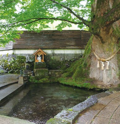 福運三社参り / 二番目に参拝する「けやき水源の水神様」