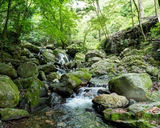 福岡市内から佐賀・三瀬までドライブ!マイナスイオンに癒される滝・渓谷スポット