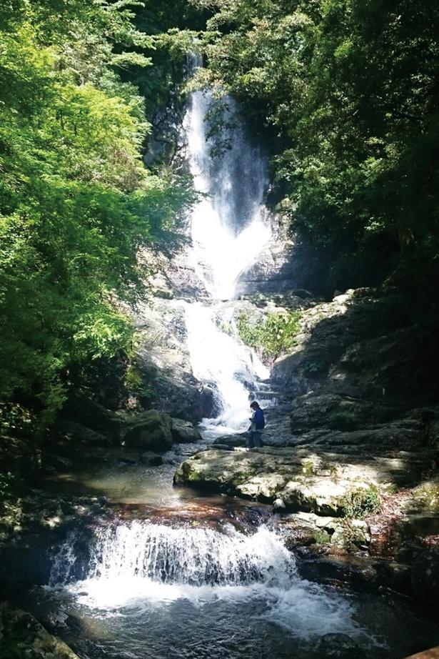 """菅生の滝 / 滝の勢いは迫力満点。""""菅生""""という名の由来に、水しぶきで女性の化粧姿も""""素顔""""にさせるという説もあるほど"""