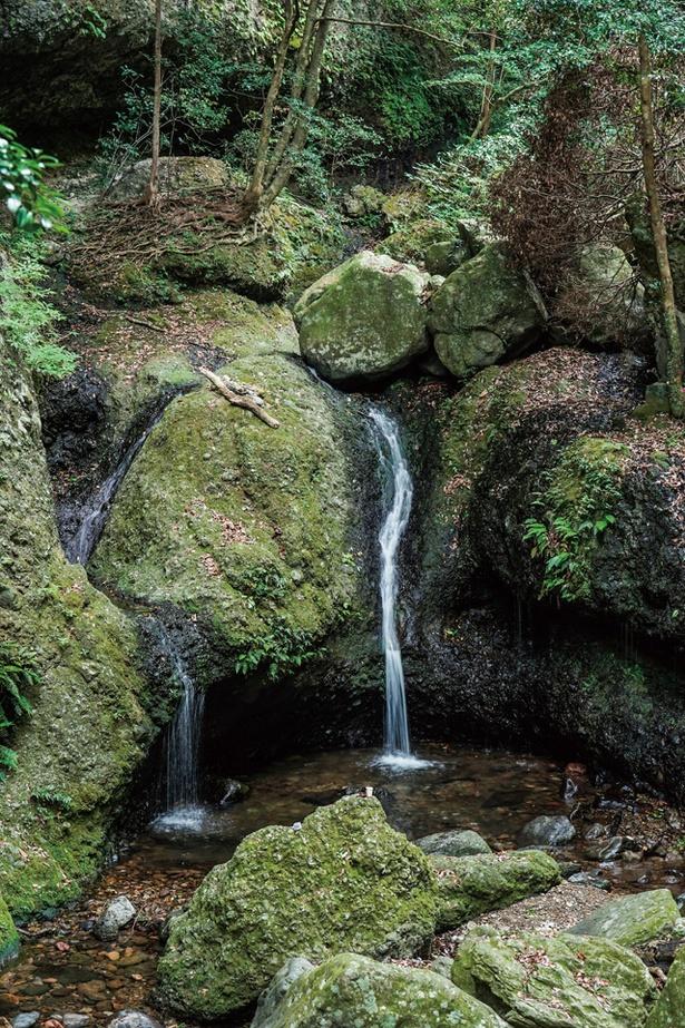 竜門峡 / 森の緑におおわれた山道は涼しく、散策にもベスト。近くにはキャンプ場もある